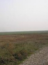 About 70% of Crimean steppe area unsuitable for farming