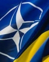 NATO to help Ukraine to transfer to standards of Alliance by 2020 - Vinnikov