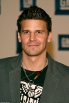 David Boreanaz weighs in on the Angel or Spike debate with Stacey Abrams... after Sarah Michelle Gellar reacts