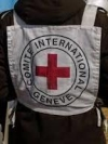 Red Cross sends 217 tonnes of humanitarian aid to occupied territories in Donbas